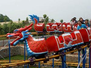 Beston аттракцион дракон BNFU-20A купить из китая
